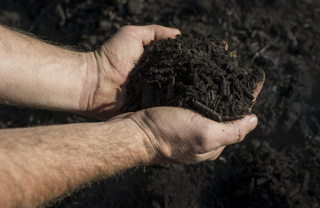 Compost main